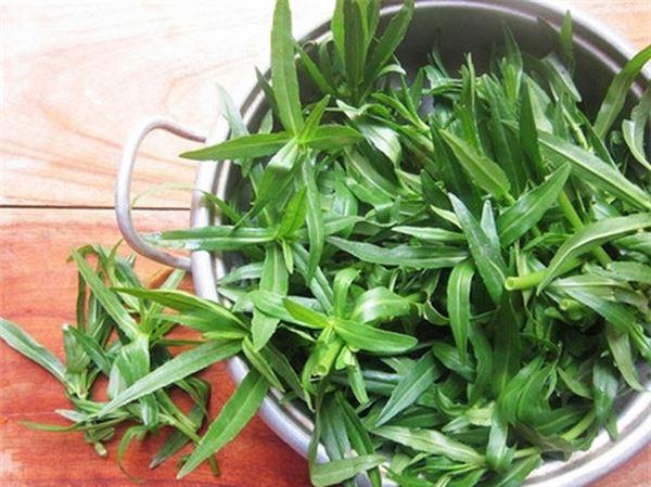Bài thuốc cây rau ngổ không quá phức tạp và đem lại hiệu quả cao